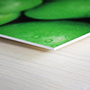 Forex/PVC Board Printing
